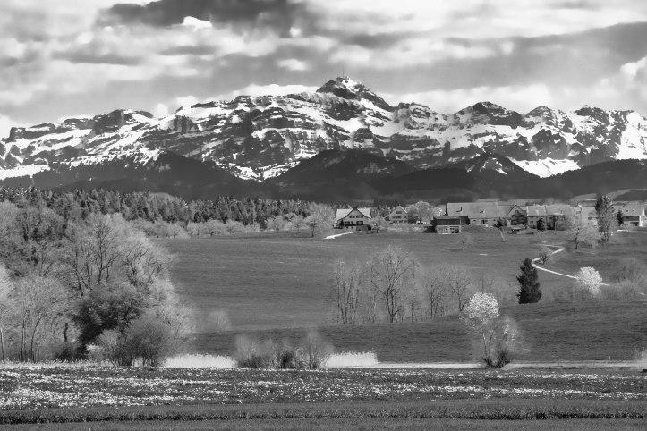 Frühling im Thurgau (1 von 10)