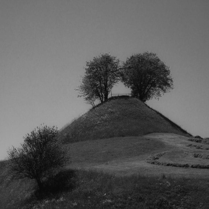 Hügel und Wälder-7191