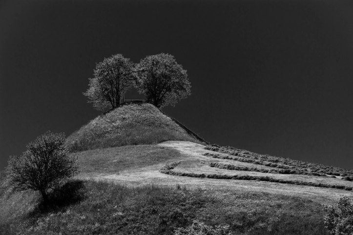 Hügel und Wälder-7192