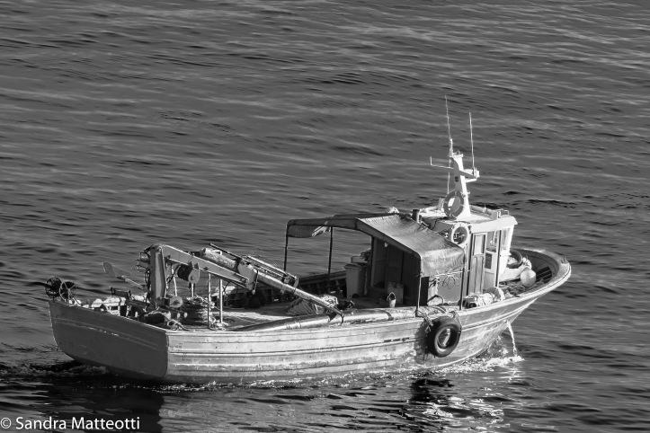 Muschelschiff-0049.jpg