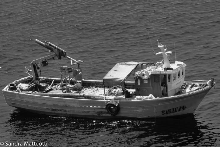 Muschelschiff-0063.jpg