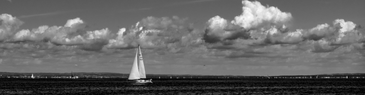 Segelschiff-0431